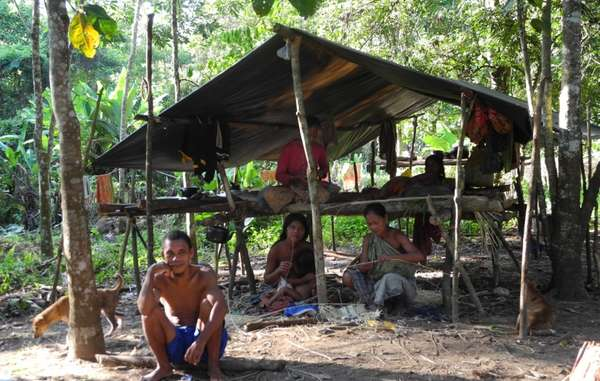 Inside the park, the Orang Rimba enjoy a much higher quality of life than in government camps on the outside.
