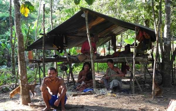 A lintérieur du parc, les Orang Rimba jouissent dune bien meilleure qualité de vie que celle des camps gouvernementaux à lextérieur.