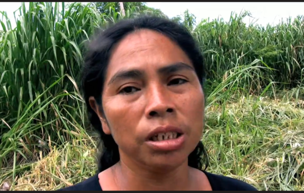 Leia Aquino, speaking to Survival a few years before her death in 2016