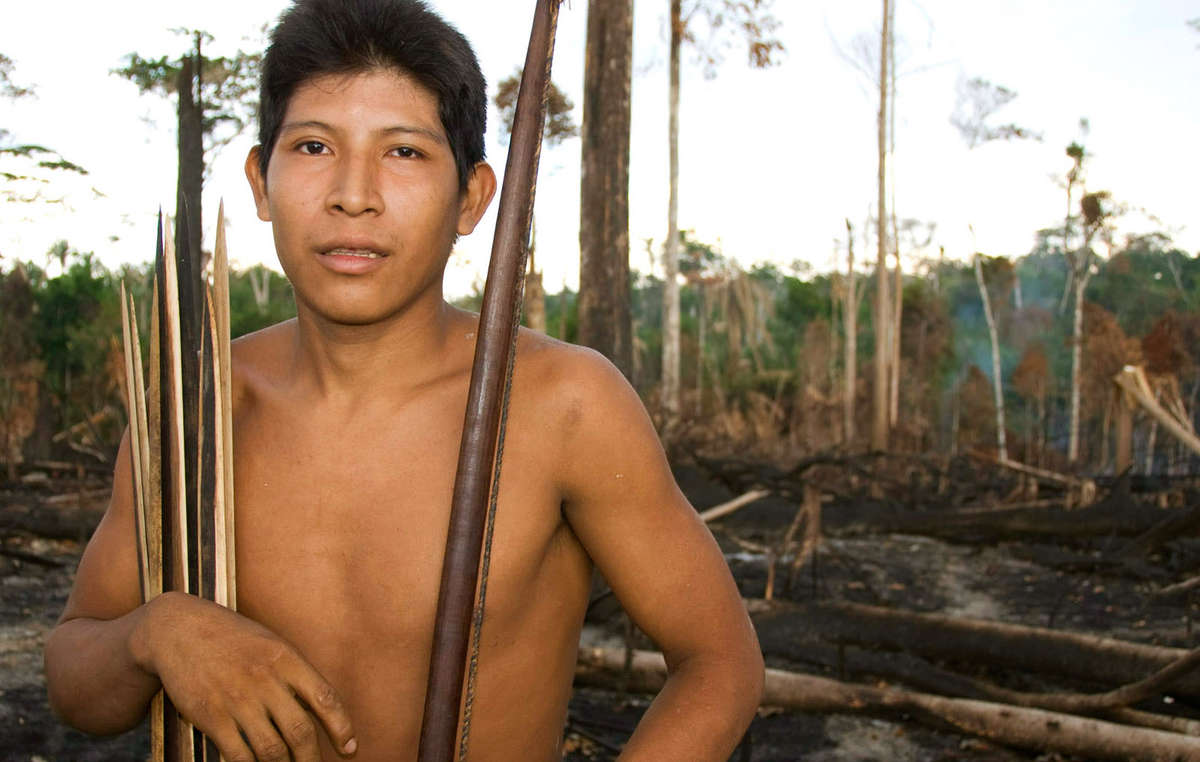 Many indigenous territories in Brazil have been burned by ranchers and loggers for years, though 2019`s fires are especially bad. Awá man Hemokoma`á stands in his people`s forest after it was burned in 2010.