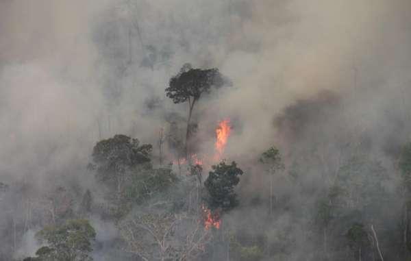 El fuego está destruyendo selva preamazónica y amenaza con aniquilar a indígenas aislados por segunda vez en menos de un año.