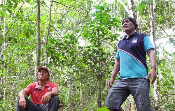 Franciel and Olimpio, from the Guajajara Guardians