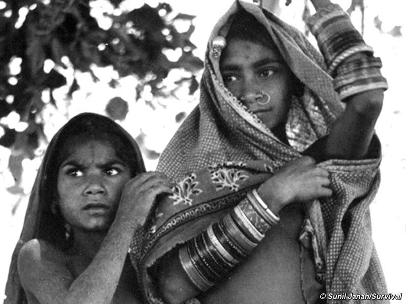 WikiLeaks: India's tribes 'exploited and abused' - Survival