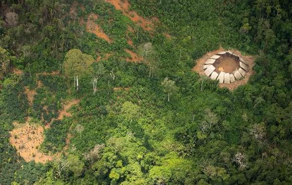 Yano de indígenas isolados na reserva Yanomami. Sabe-se que pelo menos 3 grupos são isolados.