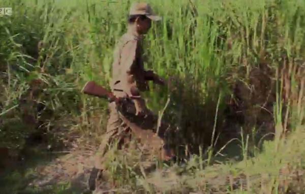 Negli ultimi anni, diversi guardaparco e funzionari di Kaziranga sono stati accusati di coinvolgimento in attività di bracconaggio e traffico illegale di fauna selvatica.