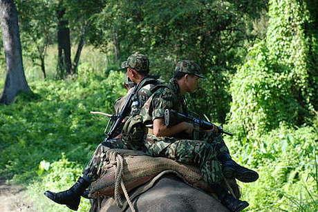 Anti-poaching_460_landscape