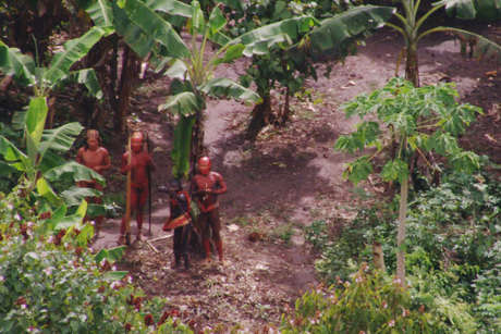 Uncontacted-footage-thumb-01_460_landscape
