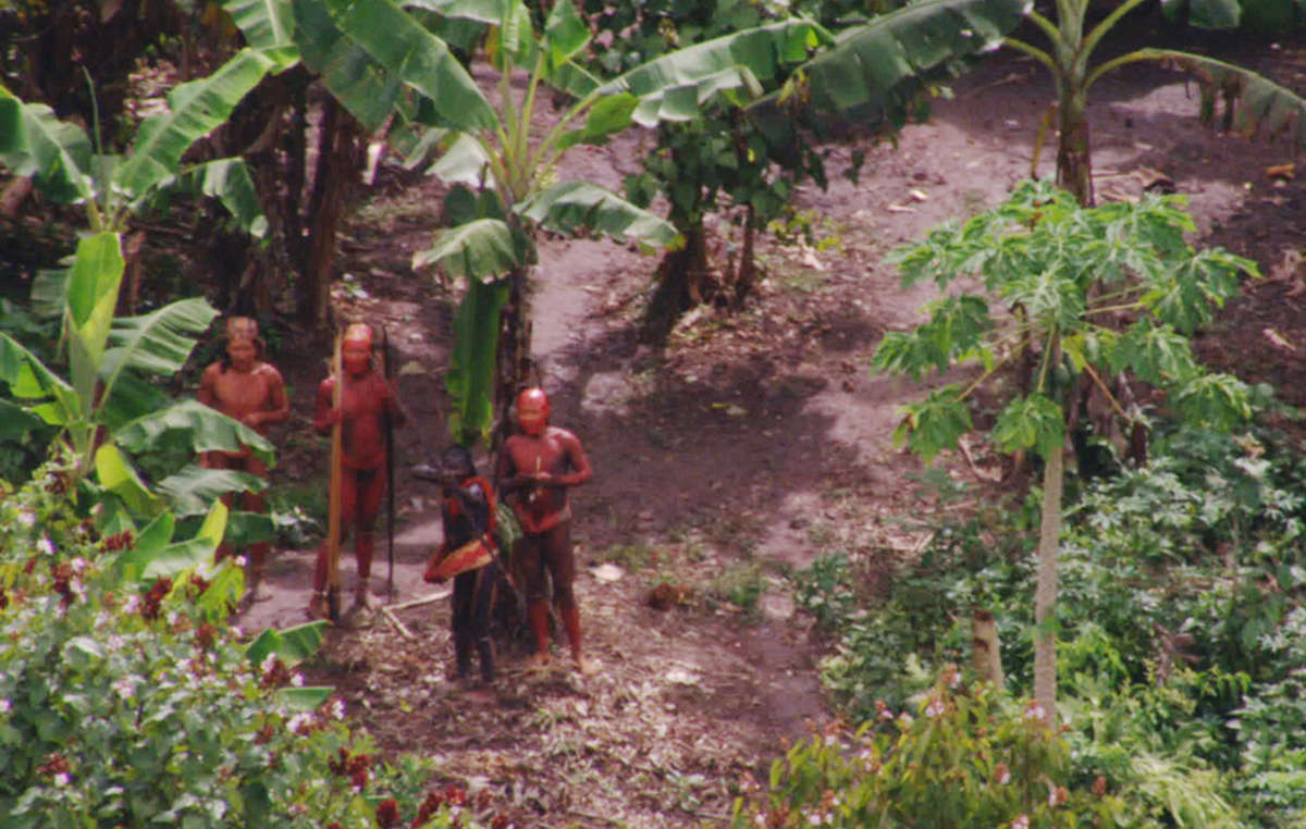 A still from aerial footage from 2011 of an uncontacted Amazon tribe in Brazil near the Peruvian border.