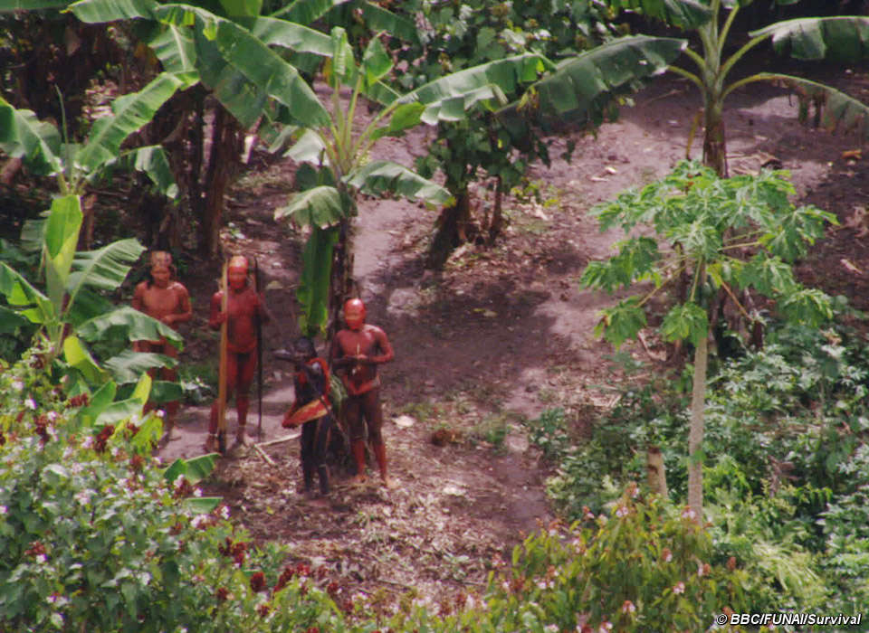 Amazonian Tribe Members Reportedly Murdered by Gold Miners