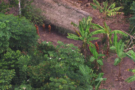 Uncontacted footage thumb 460 landscape