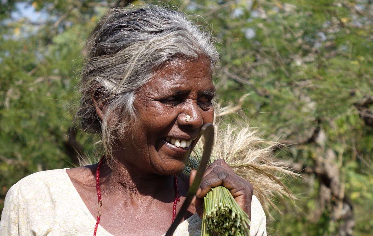 Una donna Chenchu del villaggio di Pecheru. Il villaggio fu sfrattato negli anni '80. I suoi abitanti ci raccontano che delle 750 famiglie che lo abitavano, ne sono sopravvissute solo 160. Molti sono morti di fame a seguito degli sfratti. Riserva delle tigri di Nagarjunsagar Srisailam.