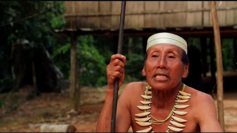 Survival y organizaciones indígenas de Perú logran que una petrolera se retire de la tierra de indígenas aislados