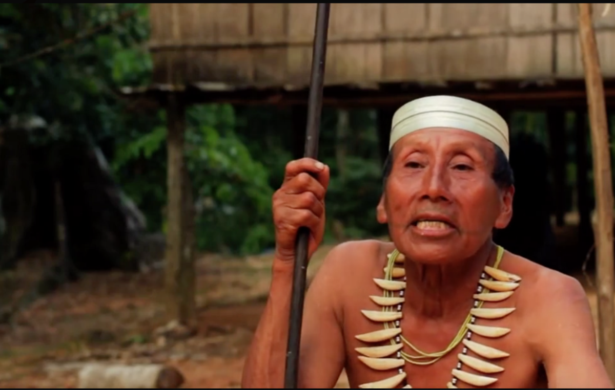 Salomon Dunu, a Matsés man who survived the trauma of first contact, speaks to a Survival campaigner about the threat of oil exploration to his people. A video of Salomon has been seen by over 4 million people through Survival's Facebook page.