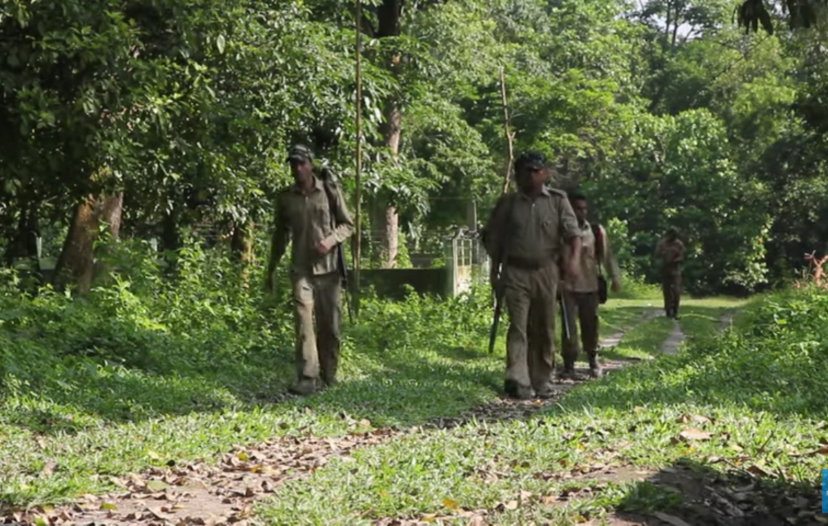 Armed guards on patrol in Kaziranga National Park, India. Guards are authorized to shoot any intruders on sight.