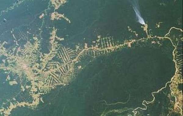Imagen aérea de la carretera BR-364 en Brasil. Muestra la destrucción espiral que pueden provocar las carreteras. Madereros y otros invasores las usan para, a su vez, construir otros caminos más pequeños que se adentran en la selva.