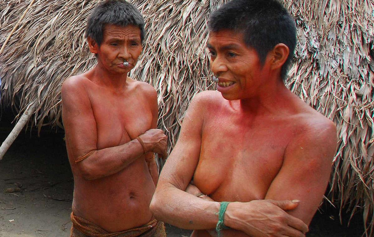 Les Nanti sont lune parmi une quinzaine de tribus isolées recensées au Pérou