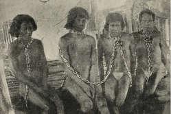 Tausende Indigene wurden während des Kautschukbooms versklavt und getötet.