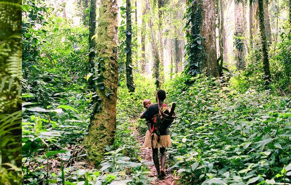 Los pueblos indígenas de la cuenca del Congo saben mejor que nadie cómo cuidar de sus entornos naturales. Sin embargo, están siendo expulsados de sus tierras ancestrales en nombre de la conservación de la naturaleza.