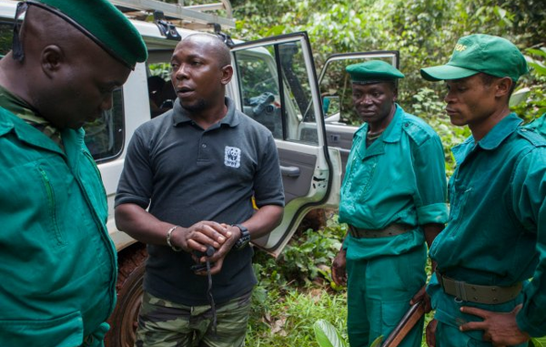 WWF has been working in the Congo Basin for decades – supporting squads who have committed violent abuse against tribal people.