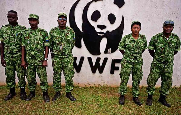 Des gardes financés par le WWF au Gabon.