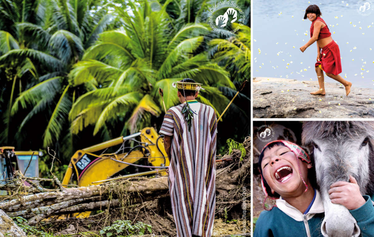 Tre altre opere vincitrici, tra cui un uomo ashaninca, fotografato da Segundo Chuquipiondo Chota, di fronte alla devastazione della sua foresta.