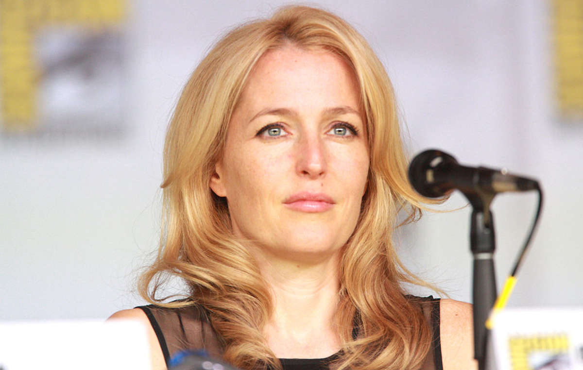 Actor, activist and Survival ambassador Gillian Anderson OBE has joined the boycott of India's tiger reserves.