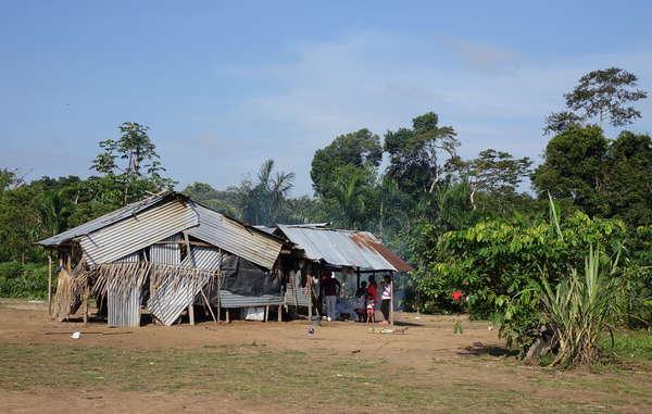Les Nukak vivent dans des camps improvisés dotés de toits en zinc et dépendent de l'aide du gouvernement. Ils sont l'un des peuples autochtones les plus menacés de Colombie.