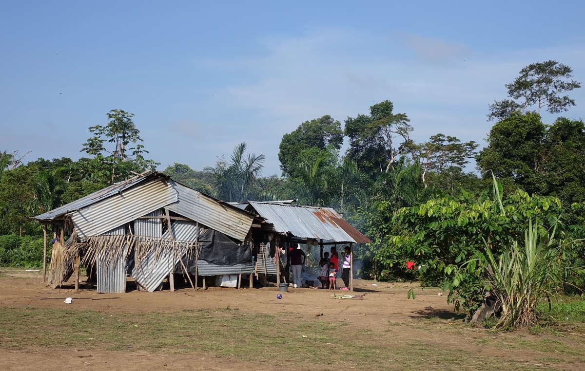 Les Nukak vivent dans des camps improvisés dotés de toits en zinc et dépendent de laide du gouvernement. Ils sont lun des peuples autochtones les plus menacés de Colombie.