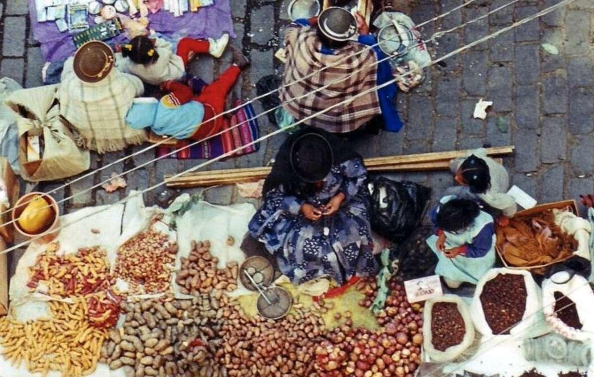 De nombreuses variétés de pommes de terre sont cultivées dans les Andes