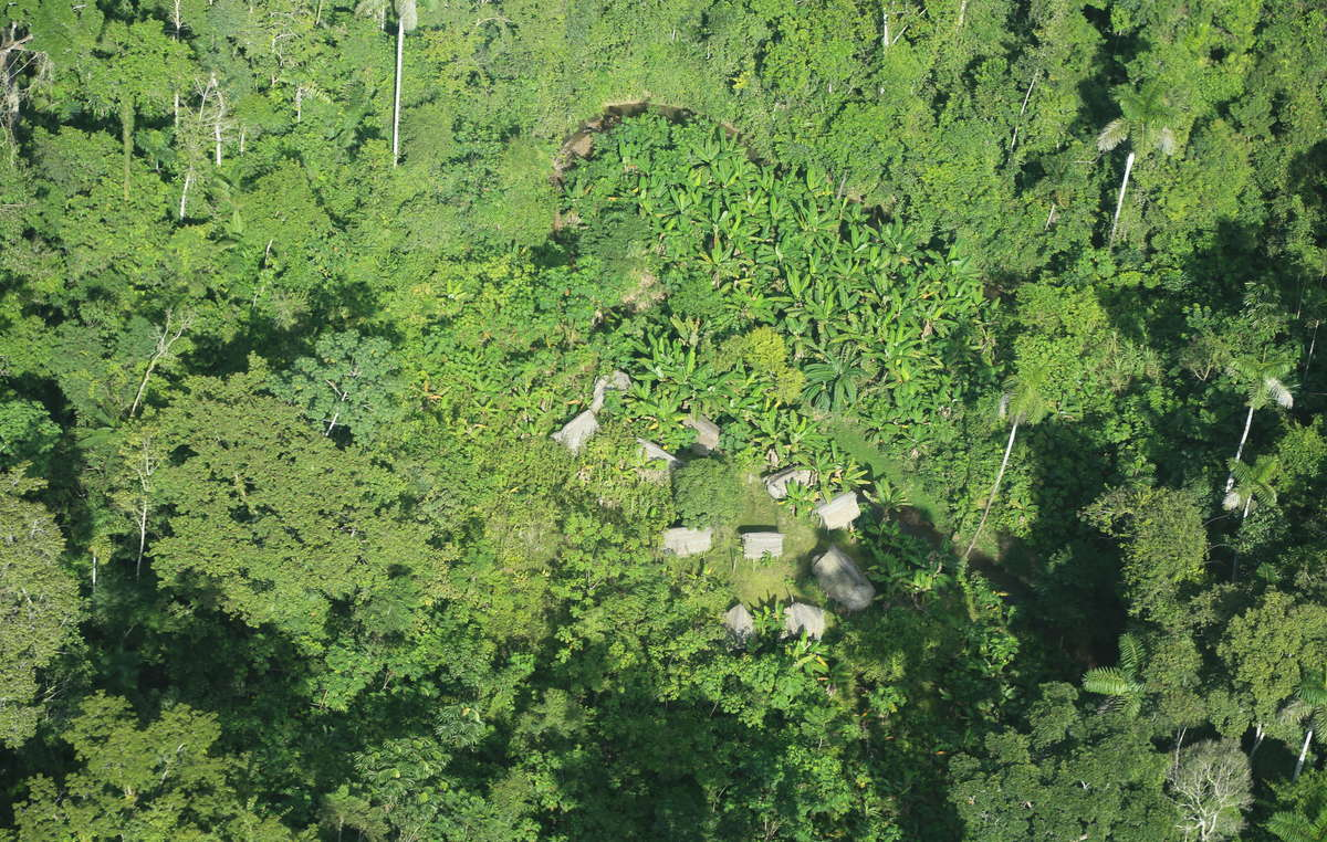 Communal houses of an uncontacted Indian community near the new Yavari-Tapiche reserve.