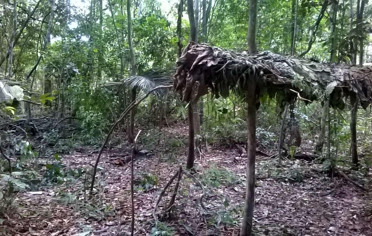 Foto de tapiri (abrigo) abandonado Awá.