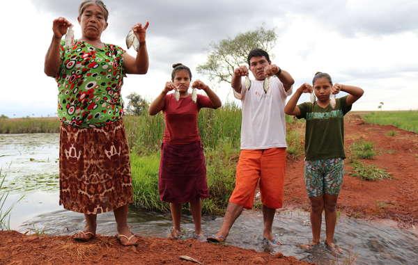 Die Fische sterben durch Pestizide bevor sie groß genug sind, um gegessen zu werden. Die Guarani leiden unter alarmierend hohen Raten von Unterernährung, da die Farmer sie von ihrem Land vertreiben und ihr Wasser vergiften.