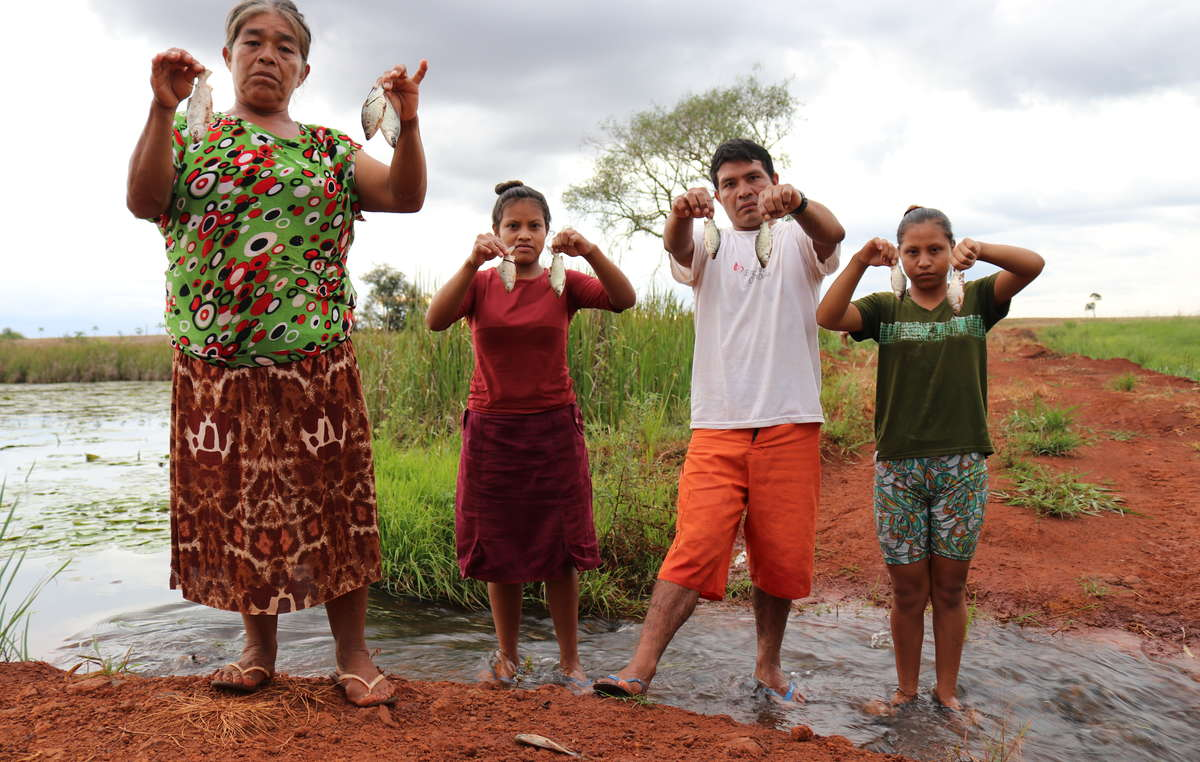 Pesticides from the huge farms surrounding Guyra Roka poison their fish, Brazil.