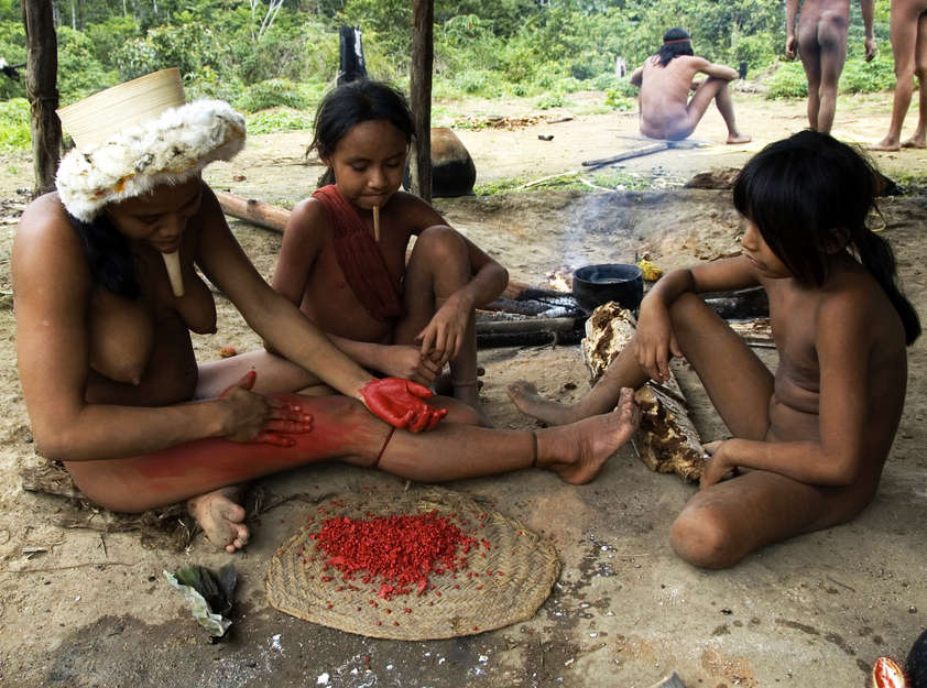 Brazil's Tribes - Survival International