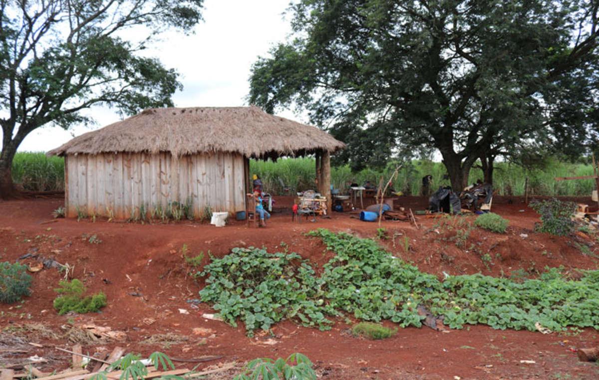 Tausende Guarani leben übergangsweise in behelfsmäßigen Lagern. Sie erobern ihr Land zurück, Stück für Stück.