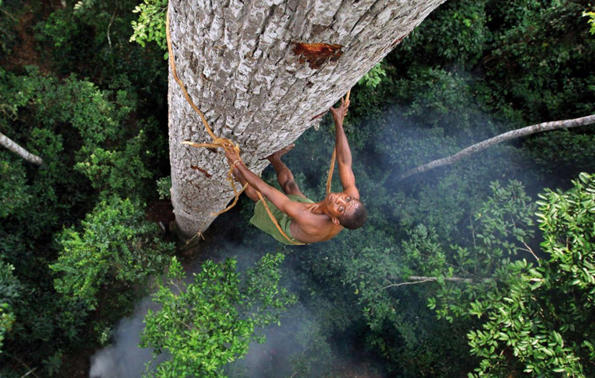 Bayaka man, Central African Republic, 2016. Survival Calendar 2019. © Timothy Allen / humanplanet.com/timothyallen
