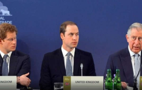Prince Harry, Prince William, and Prince Charles. Conservation groups supported by the three royals fund ecoguards accused of multiple abuses against indigenous people.