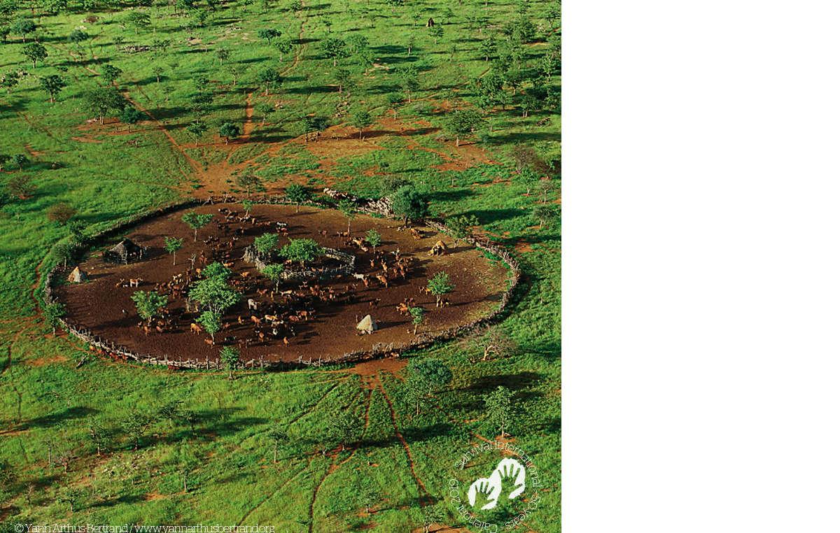 Himba village, Namibia, 1997. Survival Calendar 2019.