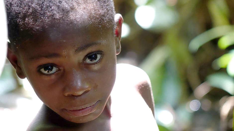 La UE revisará el apoyo a otros parques en la cuenca del Congo tras la presión ejercida por Survival.