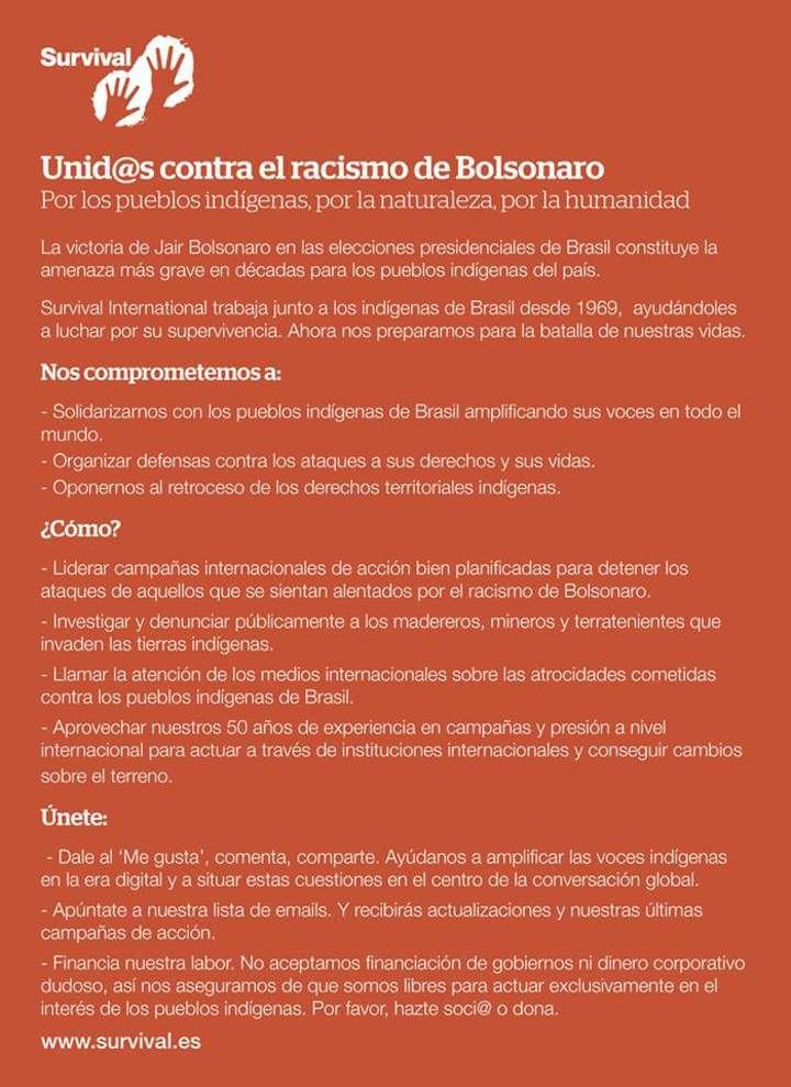 Declaración de Survival tras la elección de Jair Bolsonaro