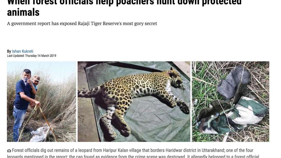 Park officials in India's Rajaji Tiger Reserve colluded with poachers in the killing of endangered animals