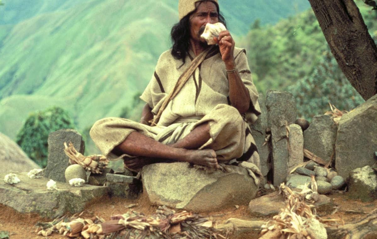 Arhuaco man, Colombia.
