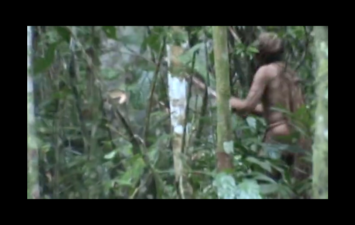 The Last of his Tribe. Screengrab from a video released by FUNAI in July 2018