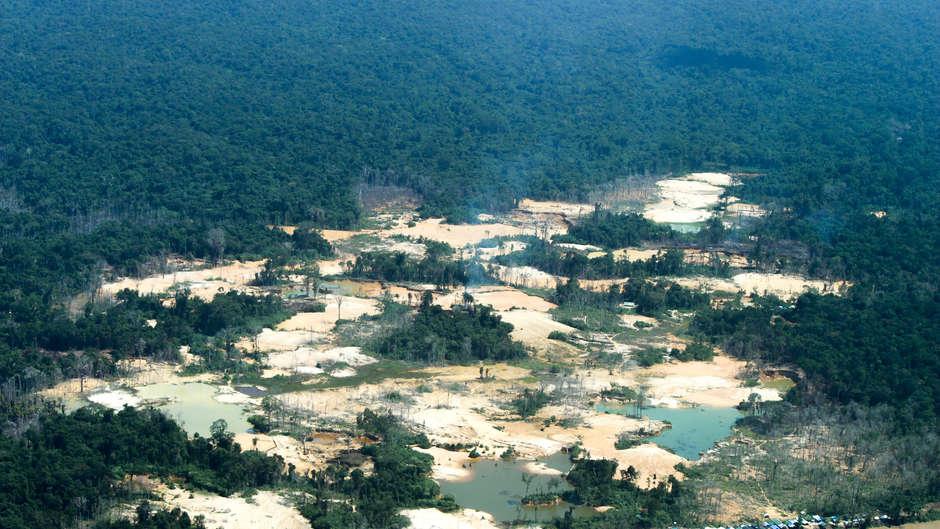 Yanomami haben weltweite Kampagne gestartet, um 20.000 Goldgräber ihres Gebietes zu verweisen und sich vor Corona zu schützen.