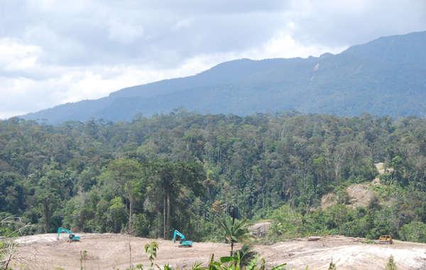 Bulldozers clear land for oil palms, Metalon, Sarawak.