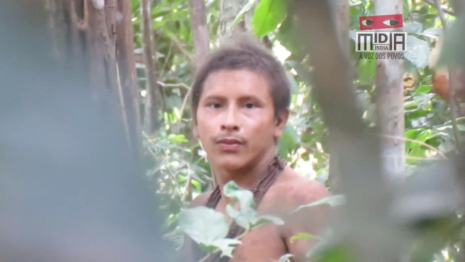 Insólitas grabaciones de indígenas awás no contactados, los más amenazados del planeta.