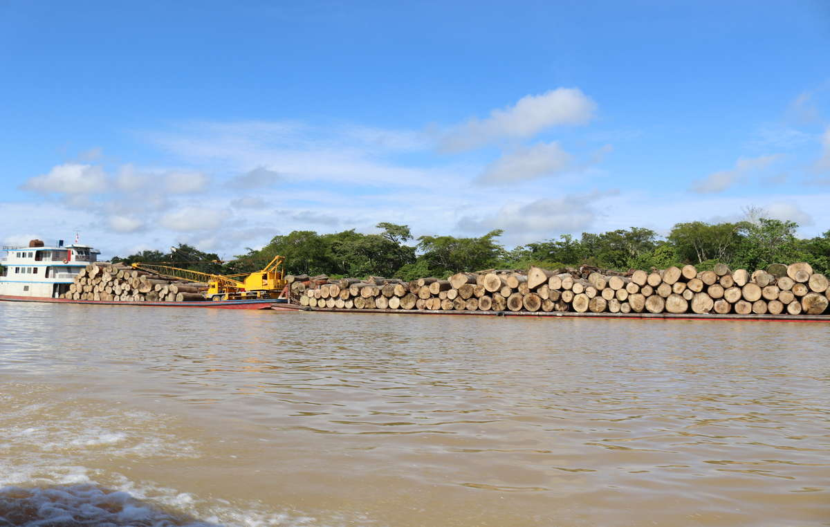 Logging boats on the Javari River, near the logging town of Benjamin Constant (Brazilian Amazon)