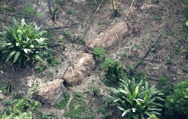Uncontacted Amazon Indians, Javari Valley, Brazil.