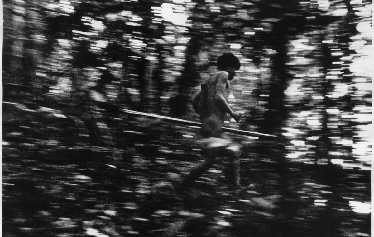 Yanomami hunter darts quietly through the Amazon. Yanomami men hunt for game like peccary, tapir, deer and monkey, and often use curare (a plant extract) to poison their prey.