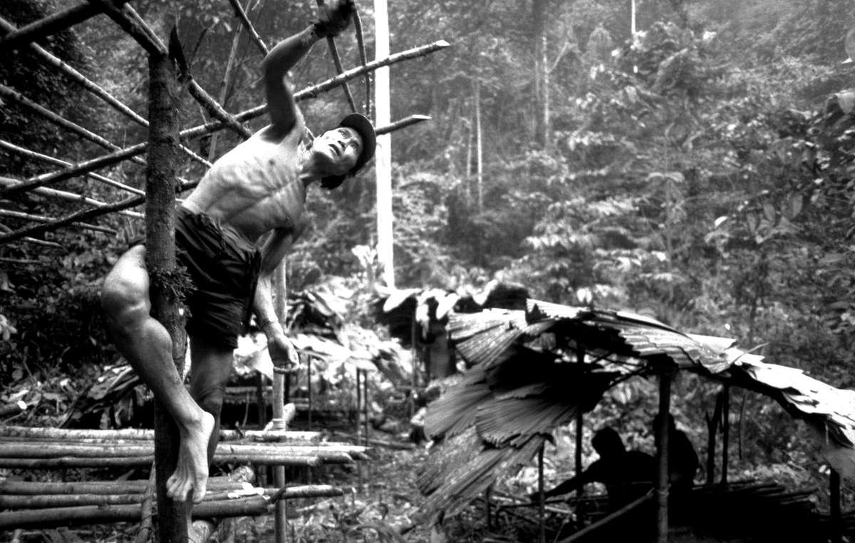 Penan man building shelter, Borneo, Malaysia.